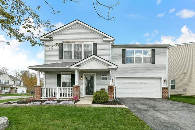 7996 Beardsley Avenue, Blacklick, OH 43004 (MLS #221012212) :: ERA Real Solutions Realty