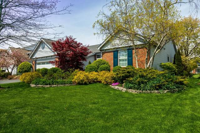 5486 Thorney Drive, Hilliard, OH 43026 (MLS #221012389) :: Shannon Grimm & Partners Team