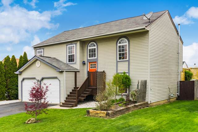 6720 Alex Drive, Canal Winchester, OH 43110 (MLS #221012395) :: MORE Ohio