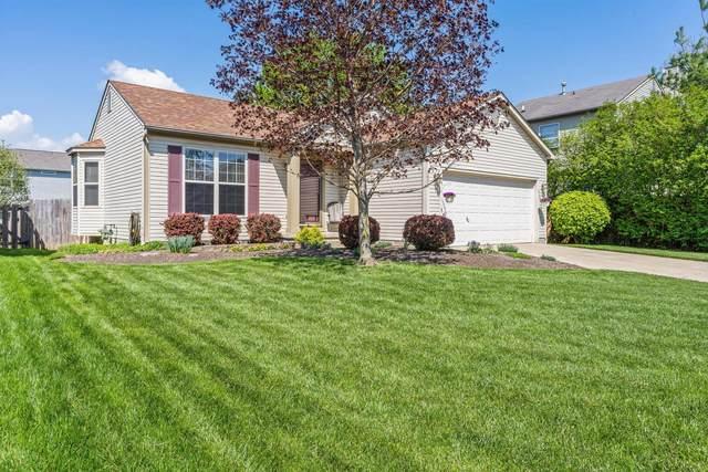 3405 Hail Ridge Drive, Reynoldsburg, OH 43068 (MLS #221012416) :: Jamie Maze Real Estate Group