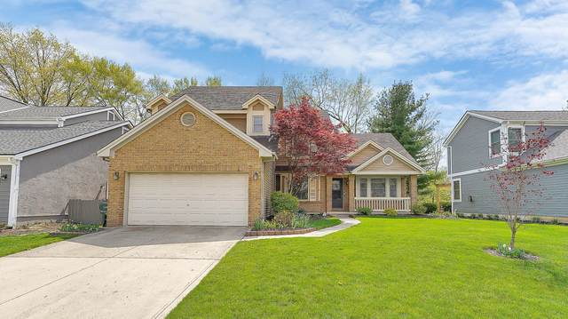 2441 Worthingwoods Boulevard, Powell, OH 43065 (MLS #221012444) :: The Raines Group
