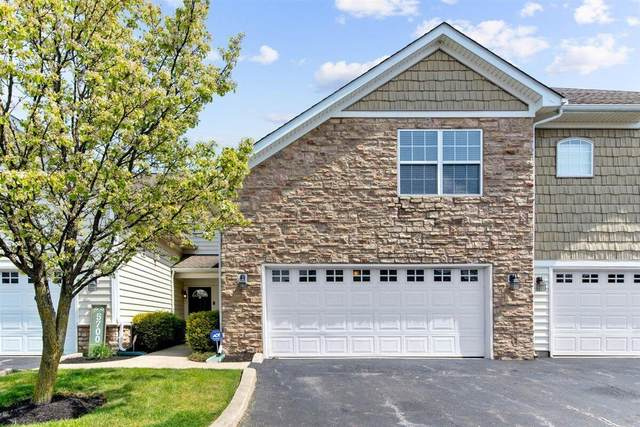 5696 Albany Reserve Drive, Westerville, OH 43081 (MLS #221012521) :: Susanne Casey & Associates