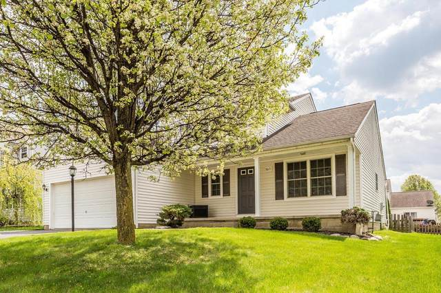 8071 Rameys Crossing Drive, Blacklick, OH 43004 (MLS #221012594) :: Jamie Maze Real Estate Group