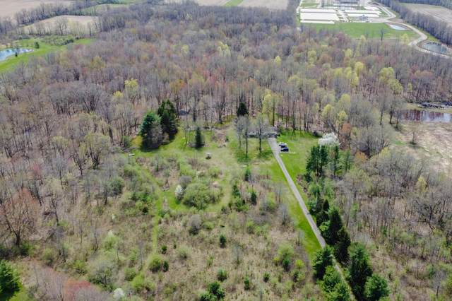 9177 Johnstown-Alexandria Road, Johnstown, OH 43031 (MLS #221012595) :: LifePoint Real Estate