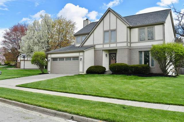 5533 Lynx Drive, Westerville, OH 43081 (MLS #221012615) :: Jamie Maze Real Estate Group