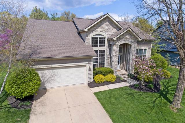 740 Collingwood Drive, Westerville, OH 43081 (MLS #221012631) :: RE/MAX Metro Plus