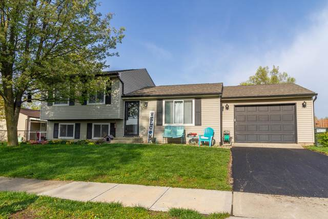 841 Rushcreek Road, Galloway, OH 43119 (MLS #221012762) :: Exp Realty