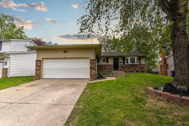 1415 Bolenhill Avenue, Columbus, OH 43229 (MLS #221012895) :: Core Ohio Realty Advisors