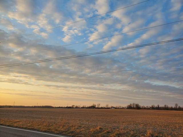 0 Troy Road Tract 10, Delaware, OH 43015 (MLS #221012970) :: The Raines Group