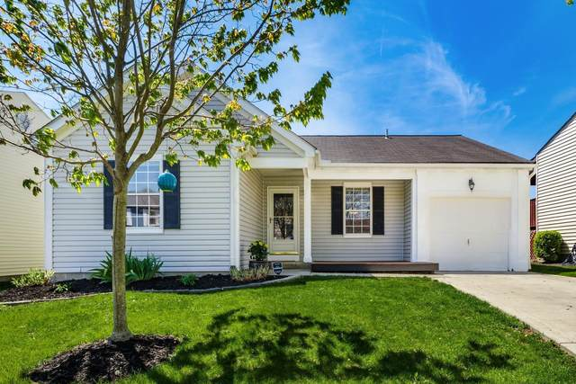 8409 Yuma Drive, Powell, OH 43065 (MLS #221013219) :: MORE Ohio