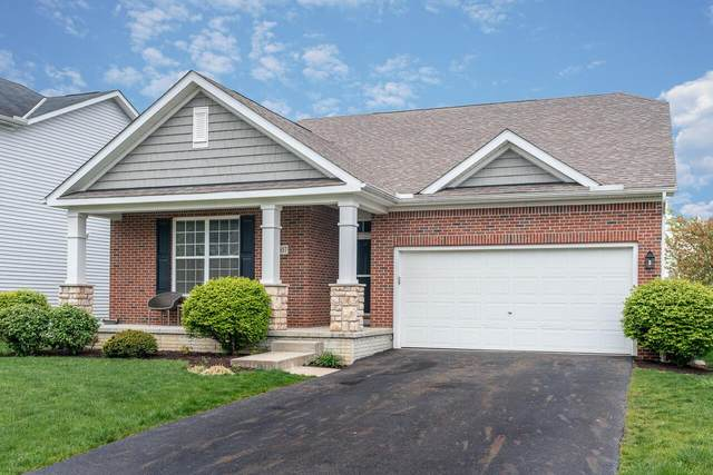 8857 Olenbrook Drive, Lewis Center, OH 43035 (MLS #221013225) :: Jamie Maze Real Estate Group