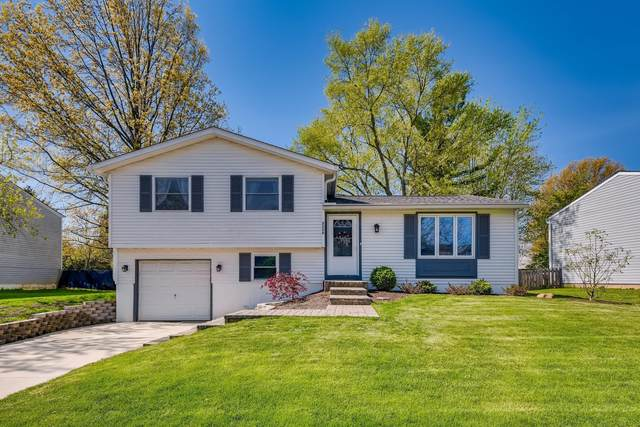 2175 Smoky View Boulevard, Powell, OH 43065 (MLS #221013268) :: The Willcut Group