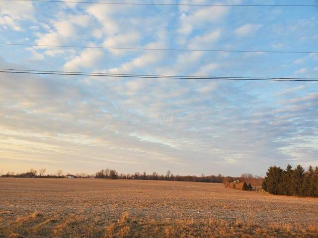 1258 Hills Miller Road, Delaware, OH 43015 (MLS #221013281) :: MORE Ohio