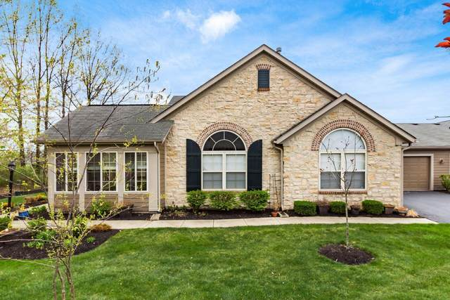 4248 Bridgelane Place, New Albany, OH 43054 (MLS #221013309) :: Exp Realty
