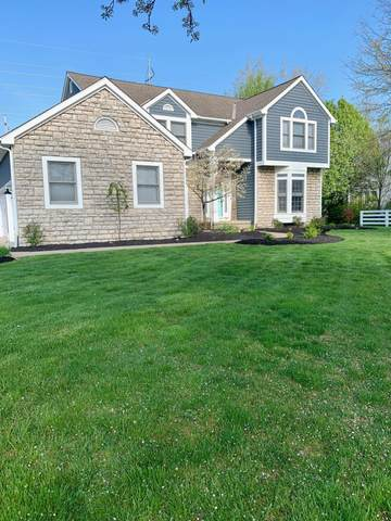 1203 Dobbins Drive, New Albany, OH 43054 (MLS #221013346) :: The Raines Group