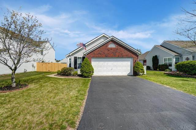 1004 Schauer Drive, Galloway, OH 43119 (MLS #221013370) :: 3 Degrees Realty