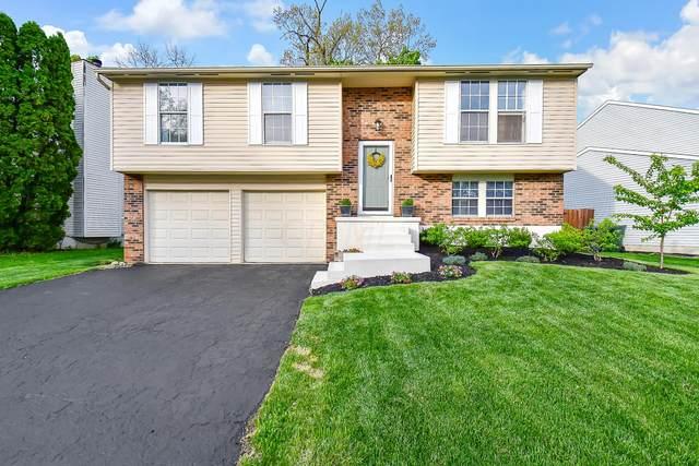 806 Maclam Drive, Columbus, OH 43204 (MLS #221013384) :: Jamie Maze Real Estate Group