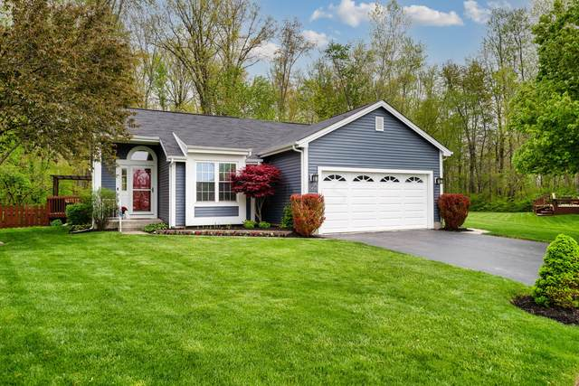 5850 Cape Coral Lane, Hilliard, OH 43026 (MLS #221013541) :: The Raines Group