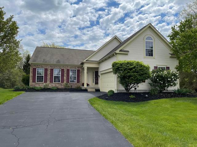 8315 Coldharbor Boulevard, Lewis Center, OH 43035 (MLS #221013836) :: The Raines Group