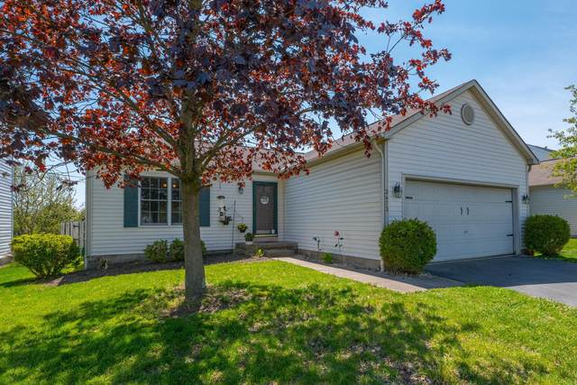 3473 Drindel Drive, Westerville, OH 43081 (MLS #221013907) :: The Willcut Group