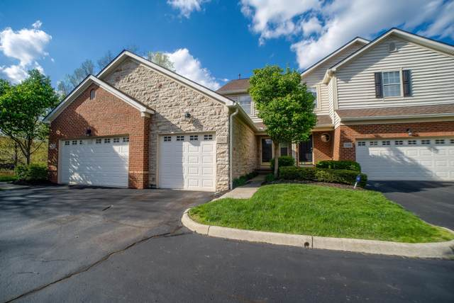 5342 Primrose Hill Drive, Columbus, OH 43230 (MLS #221014011) :: Jamie Maze Real Estate Group