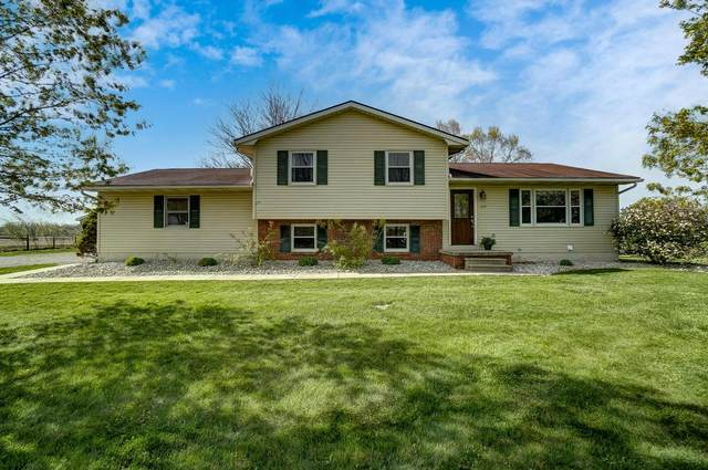 234 County Road 21, Ashley, OH 43003 (MLS #221014073) :: Exp Realty