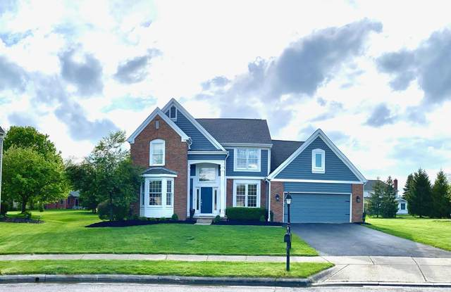 497 Vogt Court S, Powell, OH 43065 (MLS #221014403) :: RE/MAX ONE