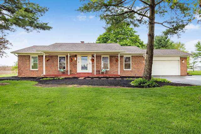 7344 Steitz Road, Powell, OH 43065 (MLS #221014409) :: LifePoint Real Estate