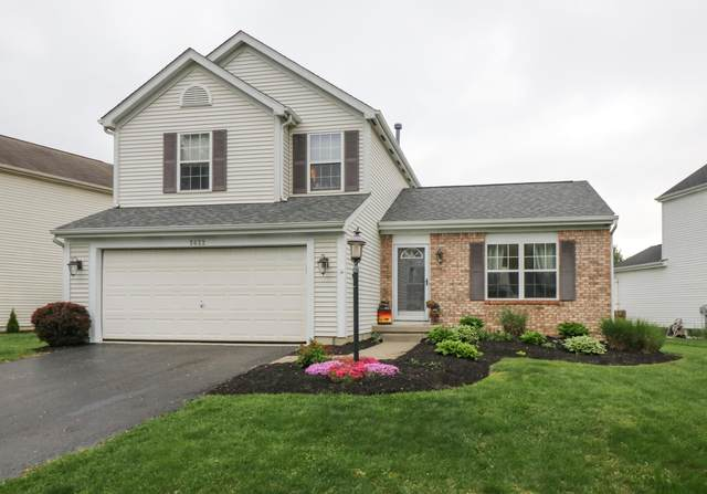 5622 Covington Meadows Drive, Westerville, OH 43082 (MLS #221014481) :: RE/MAX ONE