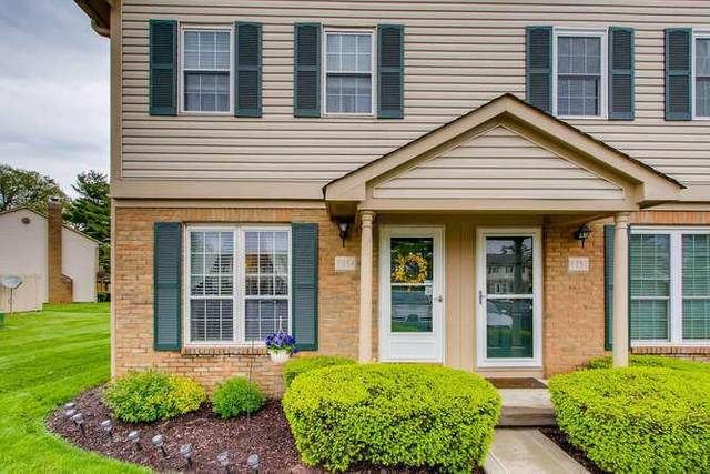 7754 Amberfalls Court, Dublin, OH 43016 (MLS #221014530) :: Exp Realty
