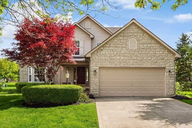 769 Melrose Boulevard, Pickerington, OH 43147 (MLS #221014601) :: Exp Realty