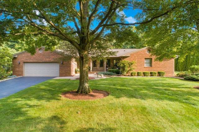 5805 Roesland Drive, Galena, OH 43021 (MLS #221014664) :: Jamie Maze Real Estate Group