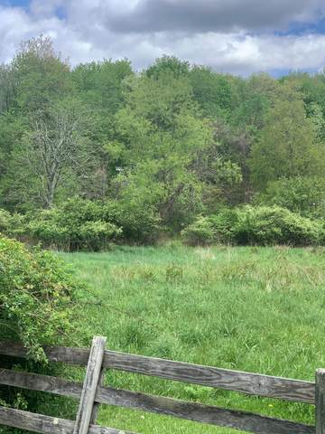 Lot 27 Maplewood Drive, Granville, OH 43023 (MLS #221014687) :: Signature Real Estate