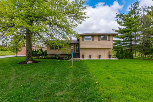 10185 Jerome Road, Dublin, OH 43017 (MLS #221014738) :: Jamie Maze Real Estate Group