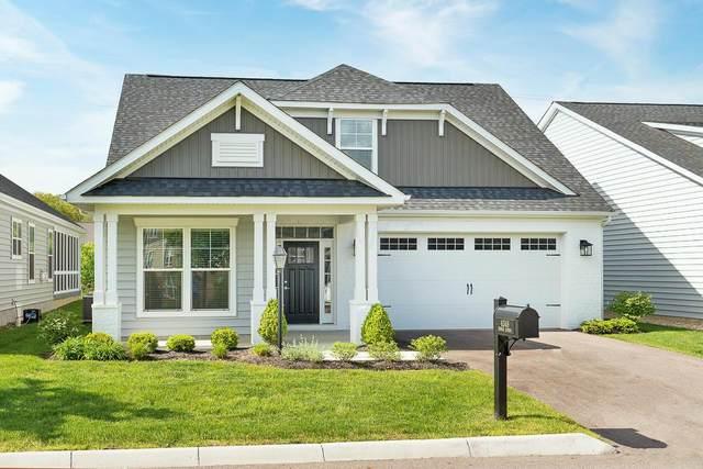 6348 Thomas Jeffrey, New Albany, OH 43054 (MLS #221014837) :: LifePoint Real Estate