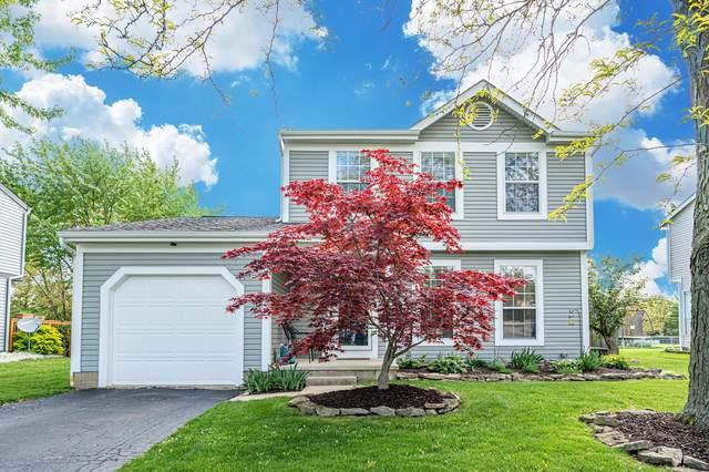 2946 Castlebrook Avenue, Hilliard, OH 43026 (MLS #221014852) :: Exp Realty