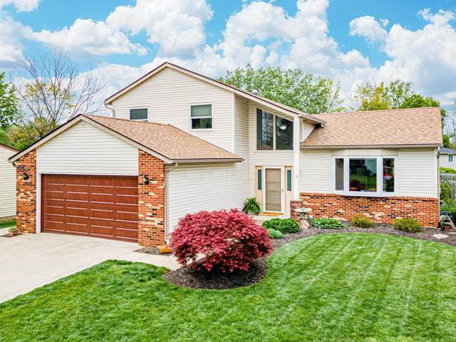 1776 Gallo Drive, Powell, OH 43065 (MLS #221015119) :: LifePoint Real Estate