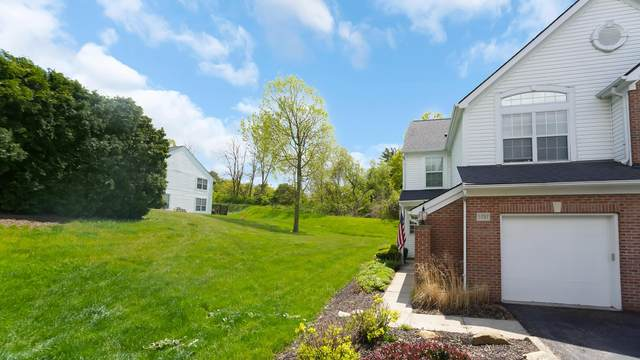 5787 Albany Green, Westerville, OH 43081 (MLS #221015133) :: Jamie Maze Real Estate Group