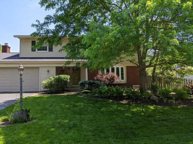 6590 Guyer Street, Worthington, OH 43085 (MLS #221015159) :: LifePoint Real Estate