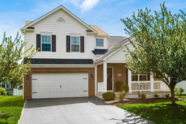 1549 Delcastle Loop, Grove City, OH 43123 (MLS #221015165) :: LifePoint Real Estate