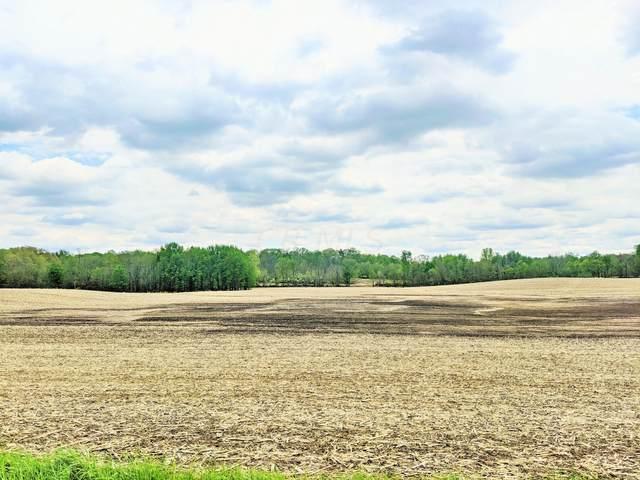 0 Township Road 183, Cardington, OH 43315 (MLS #221015277) :: Signature Real Estate