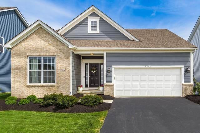 4372 Bobwhite Trace, Powell, OH 43065 (MLS #221015316) :: Signature Real Estate