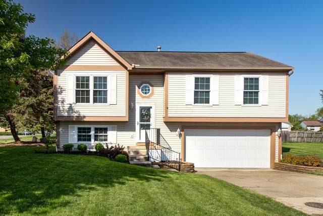 2431 Ravelston Court, Grove City, OH 43123 (MLS #221015338) :: The Jeff and Neal Team | Nth Degree Realty