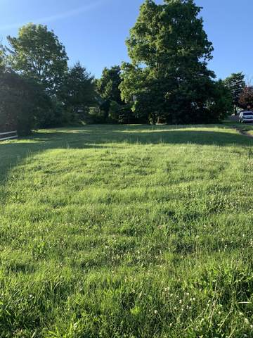 305 S Division Street Street, Mount Vernon, OH 43050 (MLS #221015426) :: LifePoint Real Estate