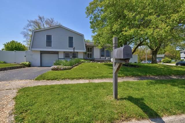 2159 Drumlin Drive, Grove City, OH 43123 (MLS #221015551) :: RE/MAX Metro Plus