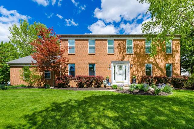 720 Mountainview Drive, Westerville, OH 43081 (MLS #221015554) :: Exp Realty