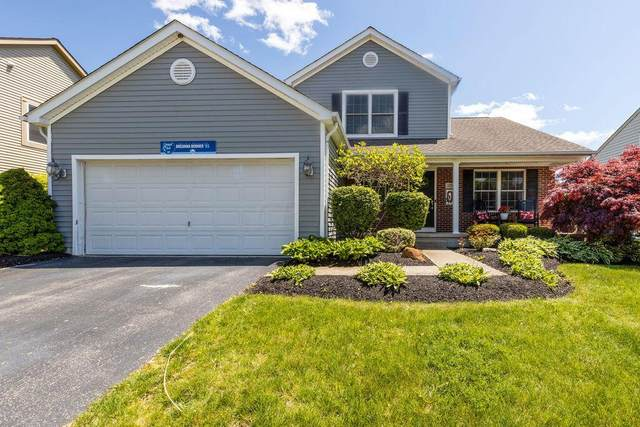 125 Ruby Red Lane, Delaware, OH 43015 (MLS #221015629) :: Exp Realty