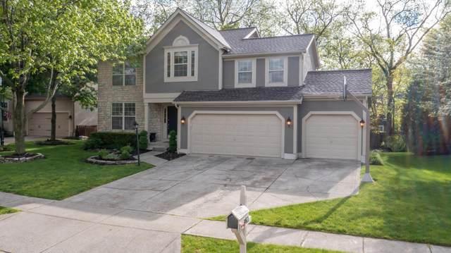 3762 Amerine Lane, Hilliard, OH 43026 (MLS #221015691) :: RE/MAX Metro Plus