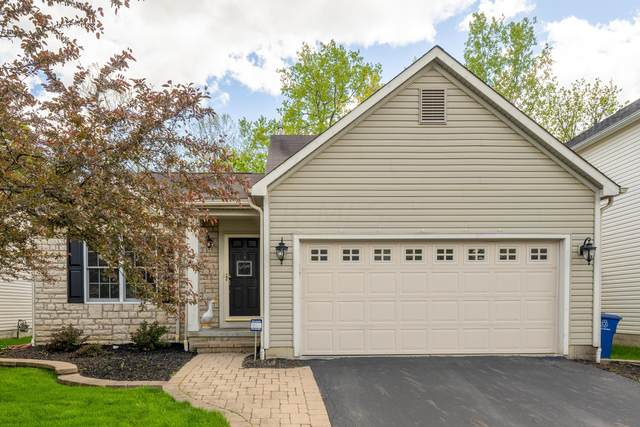3531 Brewton Drive, Westerville, OH 43081 (MLS #221015716) :: The Jeff and Neal Team | Nth Degree Realty