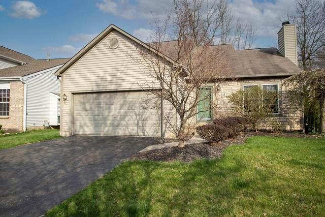 275 Kestrel Drive, Blacklick, OH 43004 (MLS #221015739) :: Susanne Casey & Associates